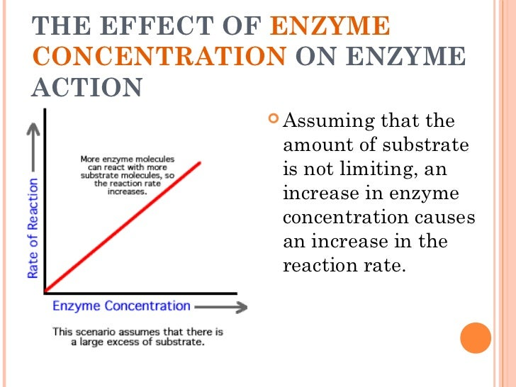 understanding enzymes and the factors that affect them essay A substance that reduces the activity of an enzyme by entering the active site in place of the substrate whose structure it mimics  factors that affect enzyme .