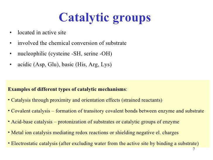 enzymes are biological catalytic essay Physiology and maintenance - vol ii - enzymes: the biological catalysts of life - pekka mäntsälä and jarmo niemi  enzyme catalysis is essential for making.