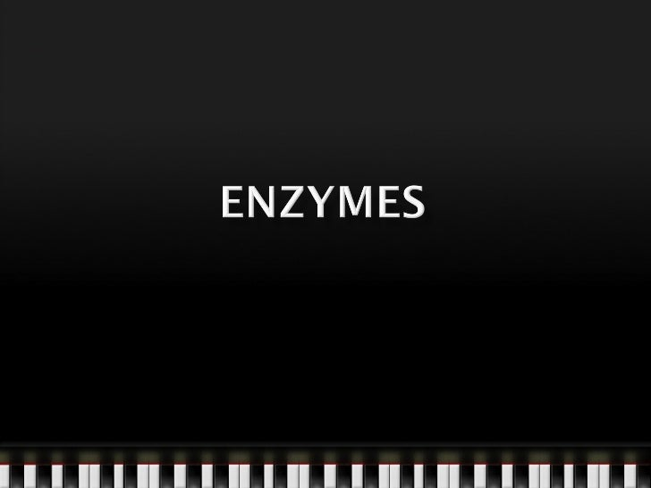 Enzymes are protein molecules that are able to       catalyse a biological reaction.