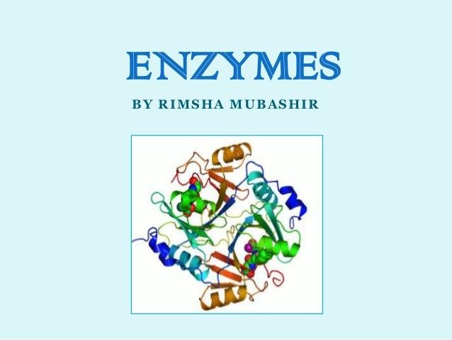 BY RIMSHA MUBASHIR ENZYMES