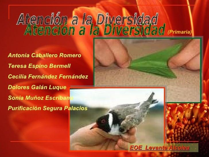 Atención a la Diversidad EOE  Levante Alcolea Antonia Caballero Romero Teresa Espino Bermell Cecilia Fernández Fernández D...