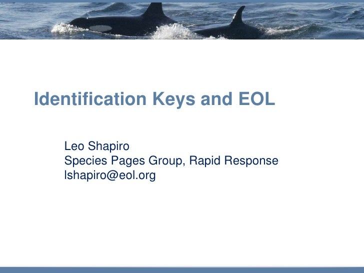 Identification Keys and EOL     Leo Shapiro    Species Pages Group, Rapid Response    lshapiro@eol.org