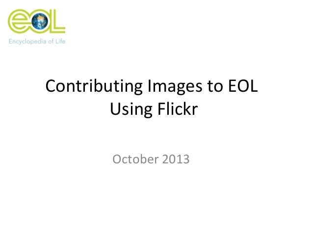 Contributing Images to EOL Using Flickr October 2013