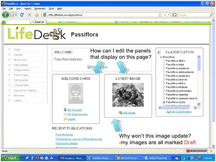 How can I edit the panels that display on this page? Why won't this image update? -my images are all marked  Draft