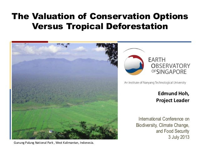 The Valuation of Conservation Options Versus Tropical Deforestation