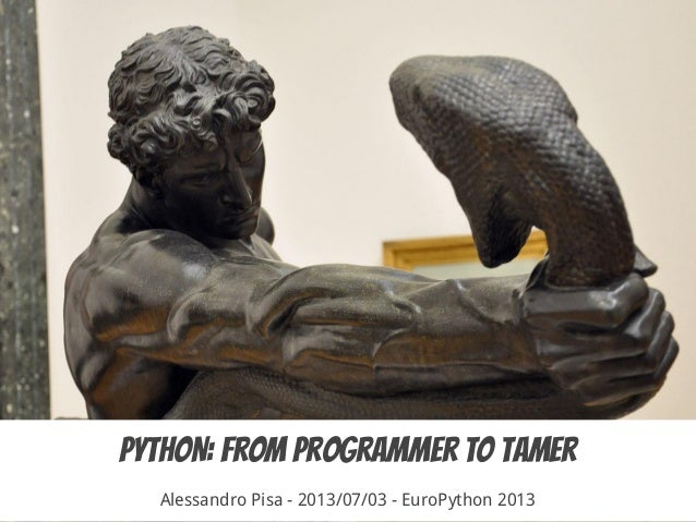 PYTHON: From programmer to tamer