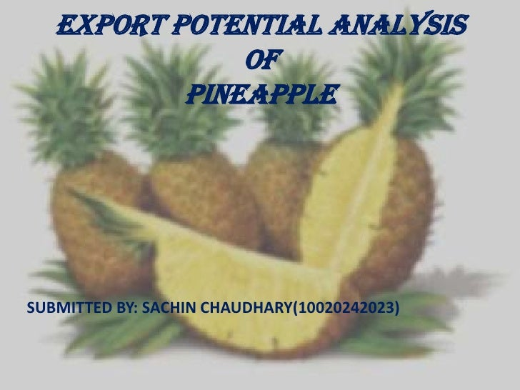 EXPORT Potential ANALYSIS OFPINEAPPLE<br />SUBMITTED BY: SACHIN CHAUDHARY(10020242023)<br />