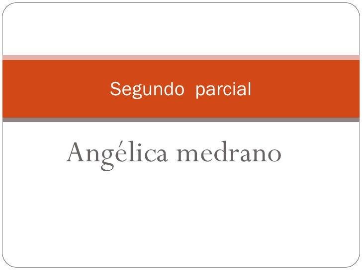 Angélica medrano  Segundo  parcial