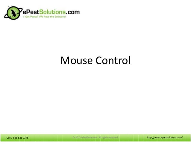ePestSolutions Offers Mouse Control Products