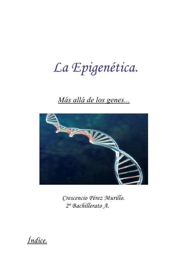 La Epigenética.            Más allá de los genes...                Crescencio Pérez Murillo.             2º Bachillerato A...