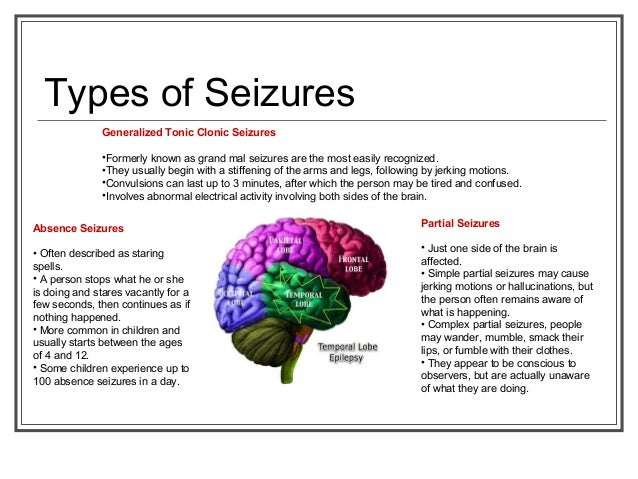 Absence Seizure Petit Mal Seizure  Healthline