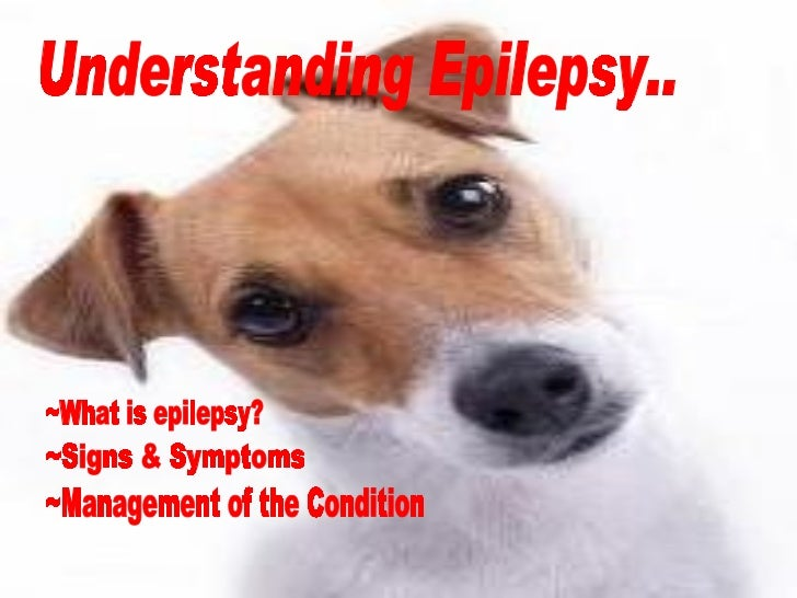 Understanding Epilepsy.. ~Signs & Symptoms ~What is epilepsy? ~Management of the Condition