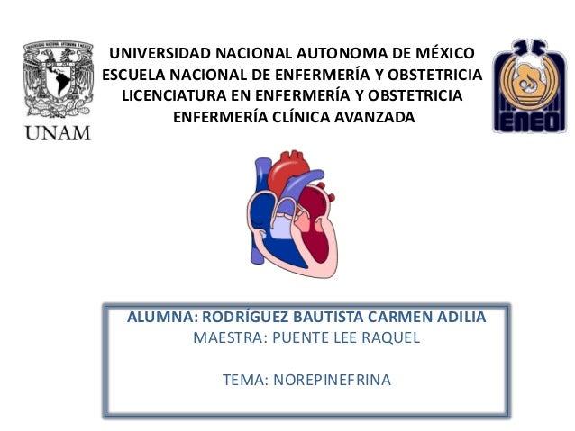 UNIVERSIDAD NACIONAL AUTONOMA DE MÉXICOESCUELA NACIONAL DE ENFERMERÍA Y OBSTETRICIA  LICENCIATURA EN ENFERMERÍA Y OBSTETRI...