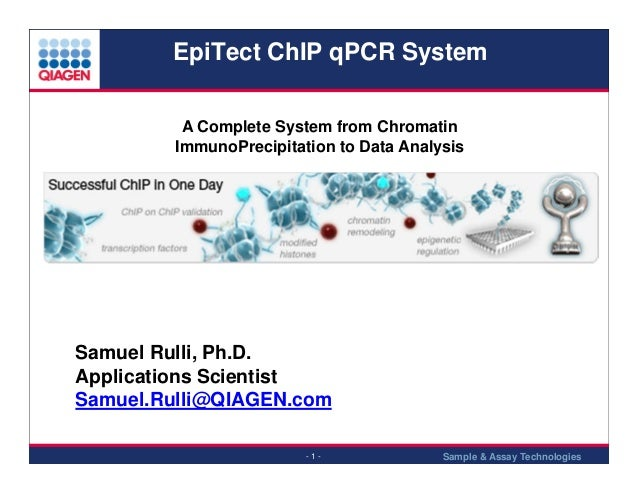 EpiTect ChIP qPCR System A Complete System from Chromatin ImmunoPrecipitation to Data Analysis  Samuel Rulli, Ph.D. Applic...
