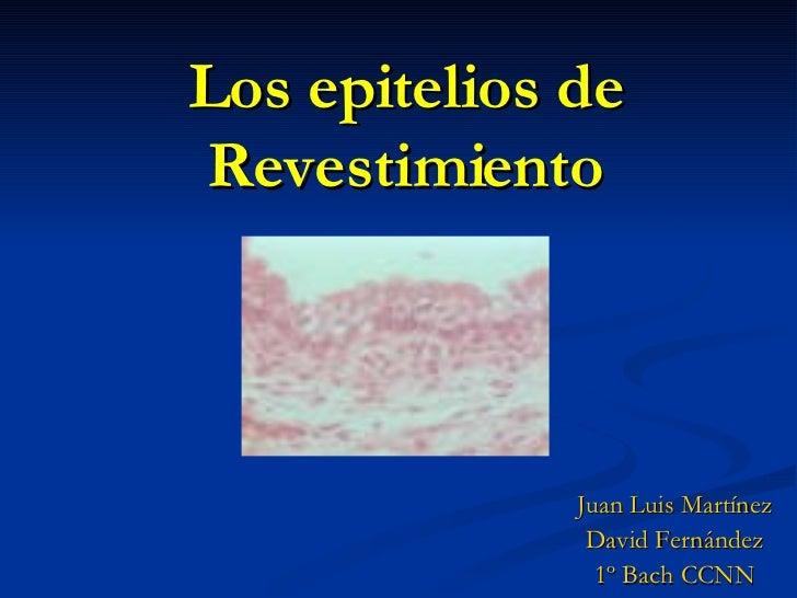 Los epitelios de Revestimiento Juan Luis Martínez David Fernández 1º Bach CCNN