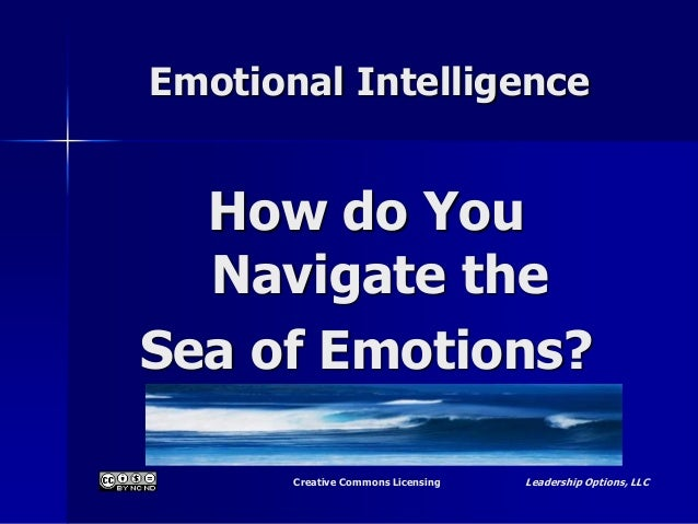 Creative Commons Licensing Leadership Options, LLC Emotional Intelligence How do You Navigate the Sea of Emotions?