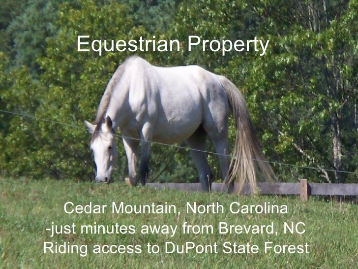 Equestrian Property        Cedar Mountain, North Carolina -just minutes away from Brevard, NC Riding access to DuPont Stat...