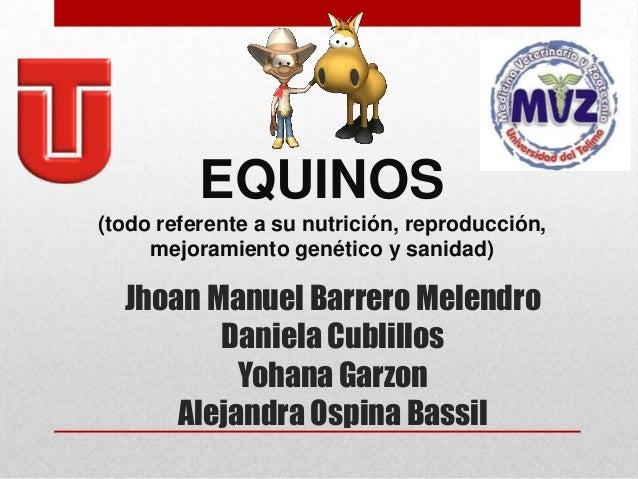 EQUINOS (todo referente a su nutrición, reproducción, mejoramiento genético y sanidad)  Jhoan Manuel Barrero Melendro Dani...