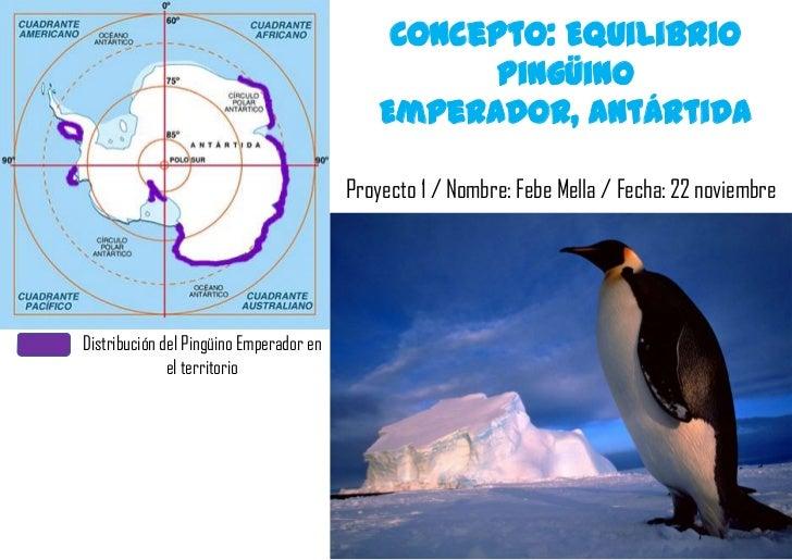 Concepto: Equilibrio                                                    Pingüino                                          ...