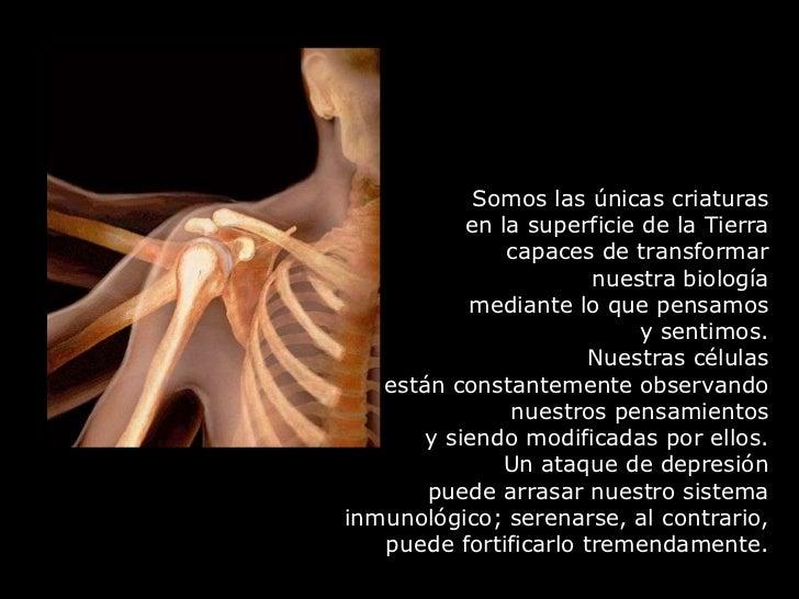 Somos las únicas criaturas en la superficie de la Tierra capaces de transformar ...