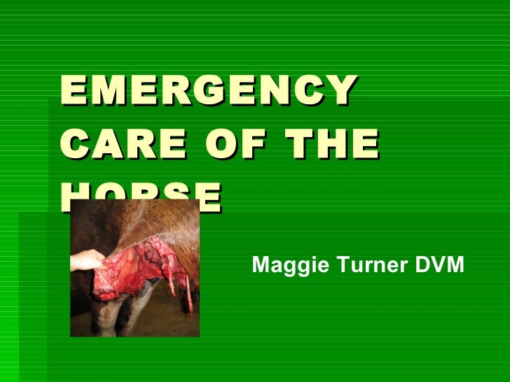 EMERGENCY CARE OF THE HORSE Maggie Turner DVM
