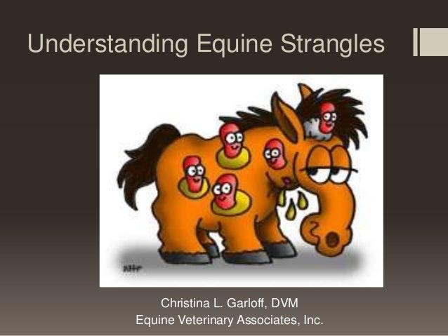 Equine strangles