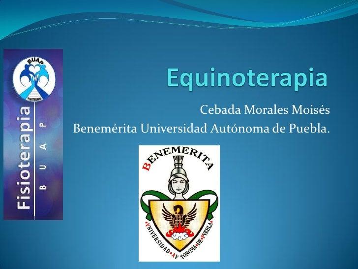 Cebada Morales MoisésBenemérita Universidad Autónoma de Puebla.