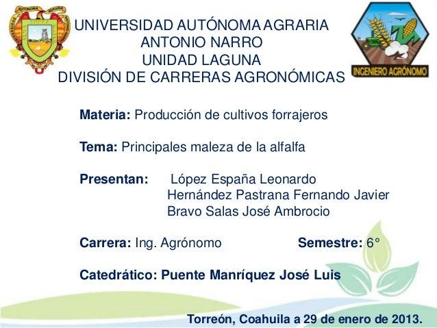 UNIVERSIDAD AUTÓNOMA AGRARIA          ANTONIO NARRO           UNIDAD LAGUNADIVISIÓN DE CARRERAS AGRONÓMICAS  Materia: Prod...