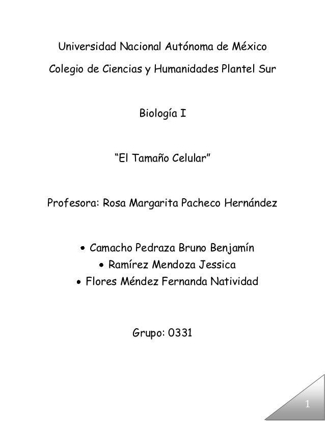 Universidad Nacional Autónoma de MéxicoColegio de Ciencias y Humanidades Plantel Sur                 Biología I           ...