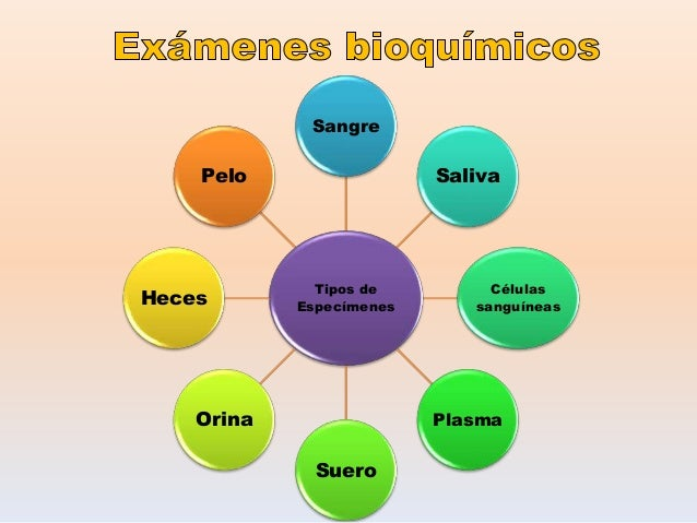 Tipos de Especímenes Sangre Saliva Células sanguíneas Plasma Suero Orina Heces Pelo