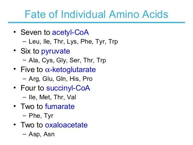 Biochemistry _ amino acid oxidation