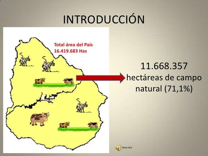 INTRODUCCIÓN<br />Total área del País 16.419.683 Has<br />11.668.357 hectáreas de campo natural (71,1%)<br />