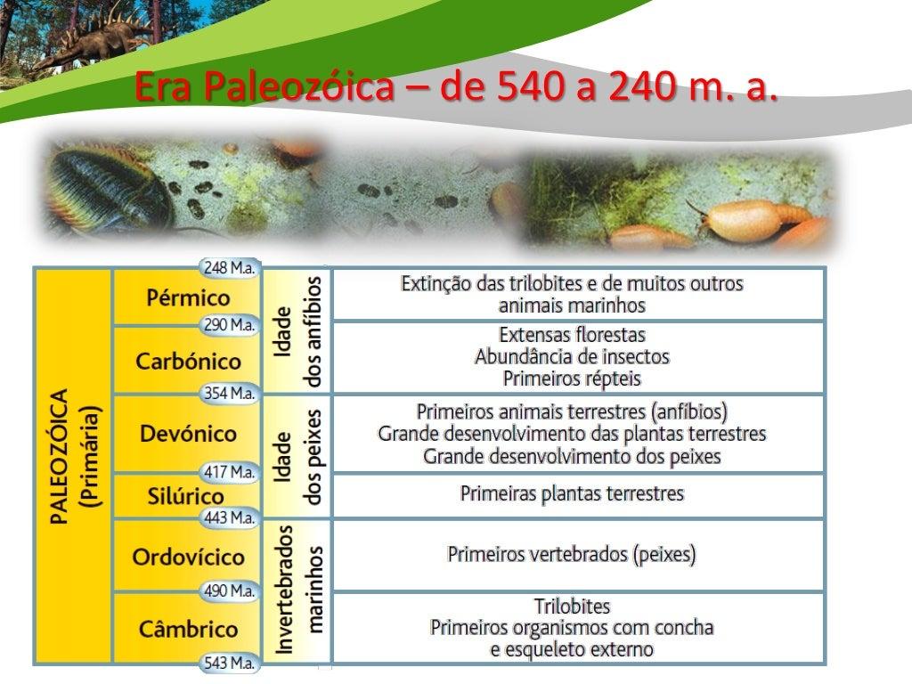 Era Paleozóica – de 540 a 240 m. a.    Câmbrico / Ordovícico / Silúrico / Devónico / Carbónico/ PérmicoAparecimento explos...