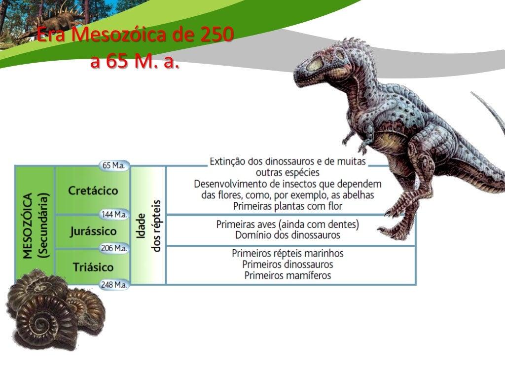 Era Mesozóica – de 250 a 65 M. a.     Triásico / Jurássico/ Cretácico Esta foi a Era das amonites e dos dinossauros.  Exis...
