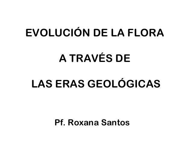 EVOLUCIÓN DE LA FLORA A TRAVÉS DE LAS ERAS GEOLÓGICAS Pf. Roxana Santos