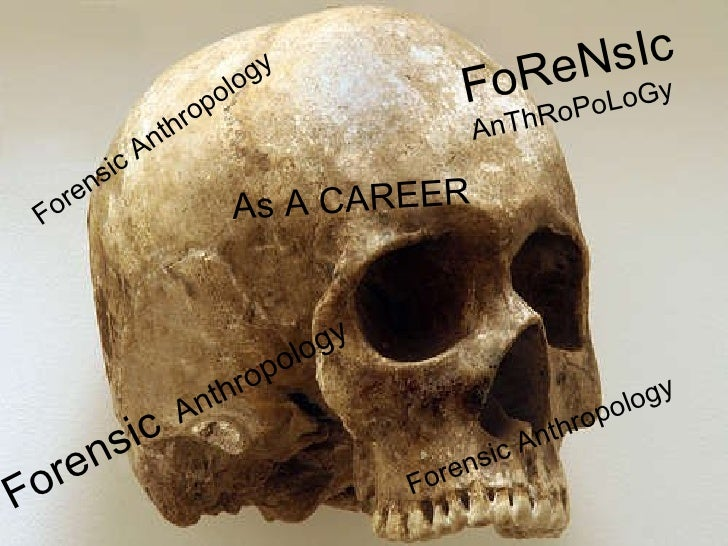 Forensic Anthropology  Forensic  Anthropology As A CAREER FoReNsIc   AnThRoPoLoGy Forensic Anthropology