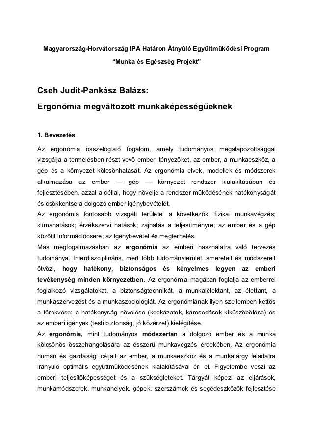 """Magyarország-Horvátország IPA Határon Átnyúló Együttműködési Program                           """"Munka és Egészség Projekt""""..."""