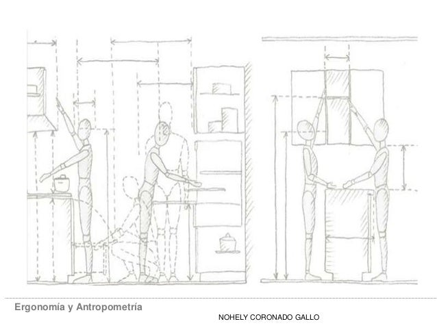 Ergonomia y antropometria for Ergonomia en muebles de casa