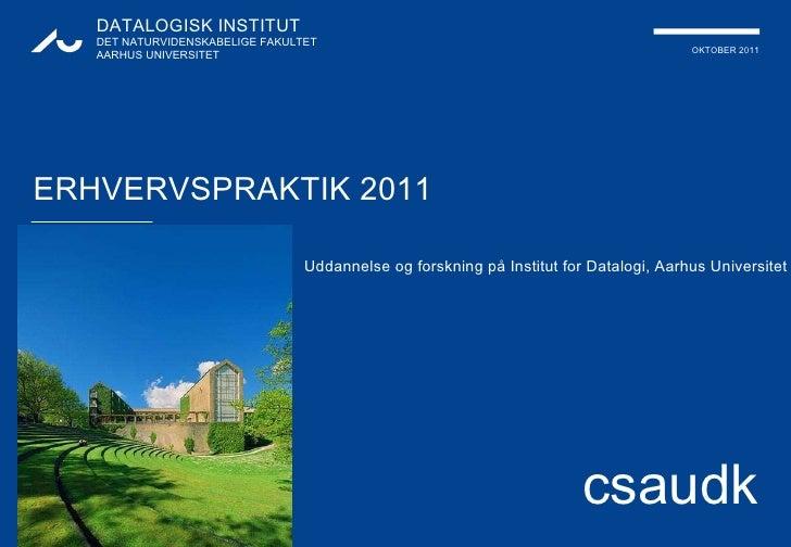Erhvervspraktik2011