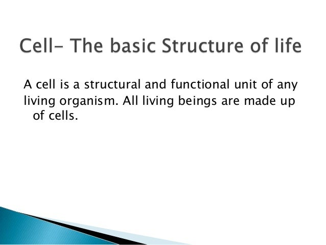 Cell- The basic Structure of life