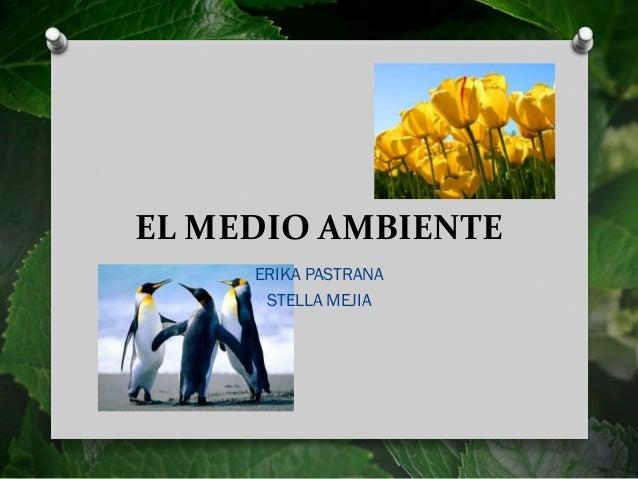 EL MEDIO AMBIENTE ERIKA PASTRANA STELLA MEJIA
