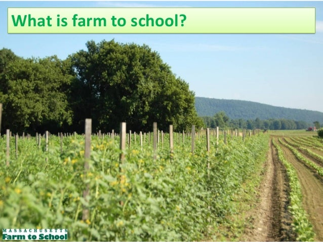What is farm to school?