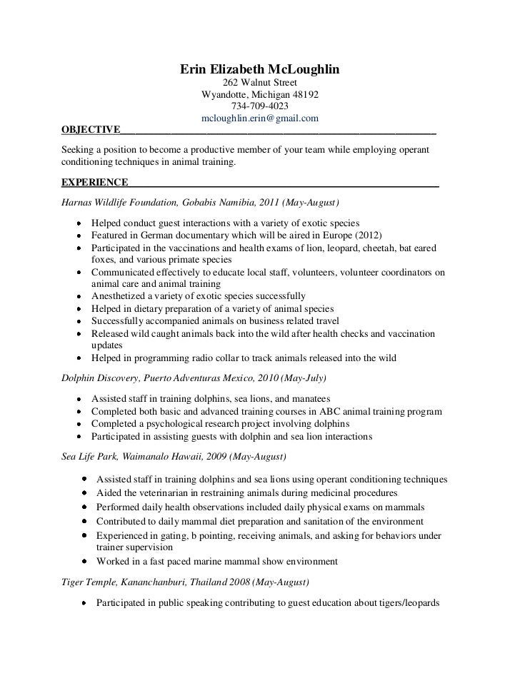 sle cover letter sle zoo resume