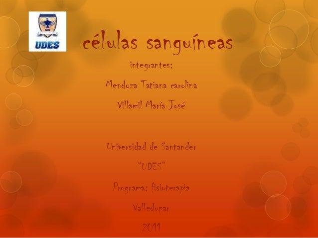 """células sanguíneas integrantes:  Mendoza Tatiana carolina Villamil María José  Universidad de Santander """"UDES"""" Programa: f..."""