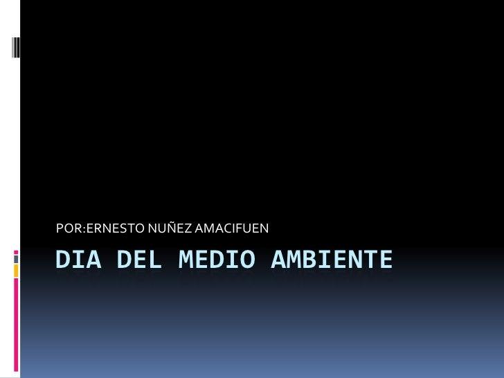 DIA DEL MEDIO AMBIENTE<br />POR:ERNESTO NUÑEZ AMACIFUEN<br />
