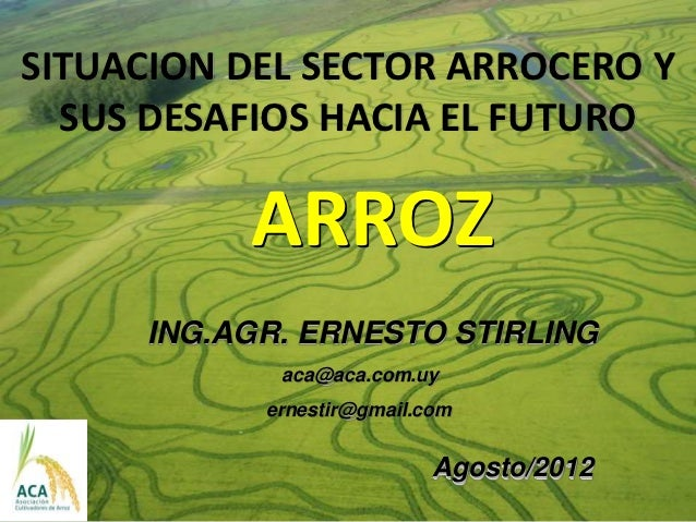 Ernesto stirling arroz