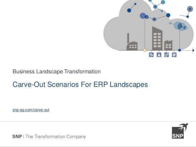 Typical Carve-Out Scenarios For ERP Landscapes
