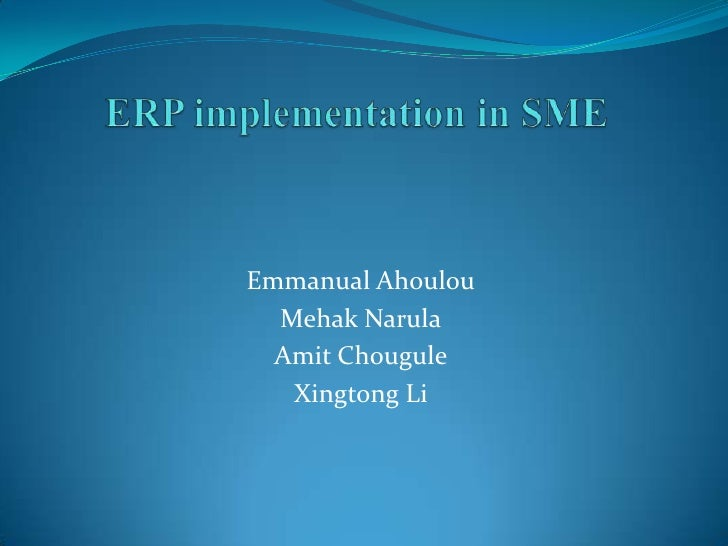 Consultants role in ERP implementations in SME