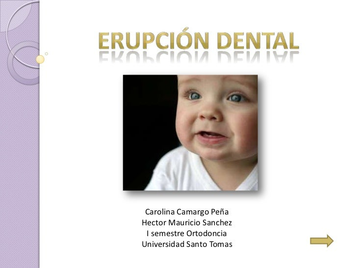 Carolina Camargo PeñaHector Mauricio Sanchez I semestre OrtodonciaUniversidad Santo Tomas