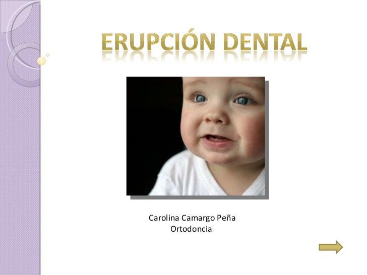 Carolina Camargo Peña Ortodoncia